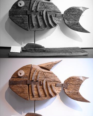 Pesce - Michele Simenoni